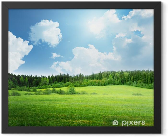 Plakat w ramie Pole trawy i perfect sky - Tematy