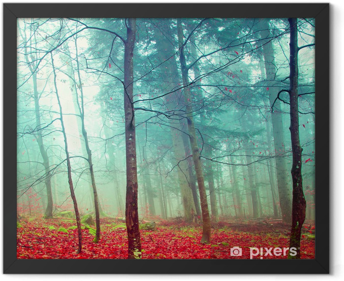 Colorful mystic autumn trees Framed Poster - Destinations