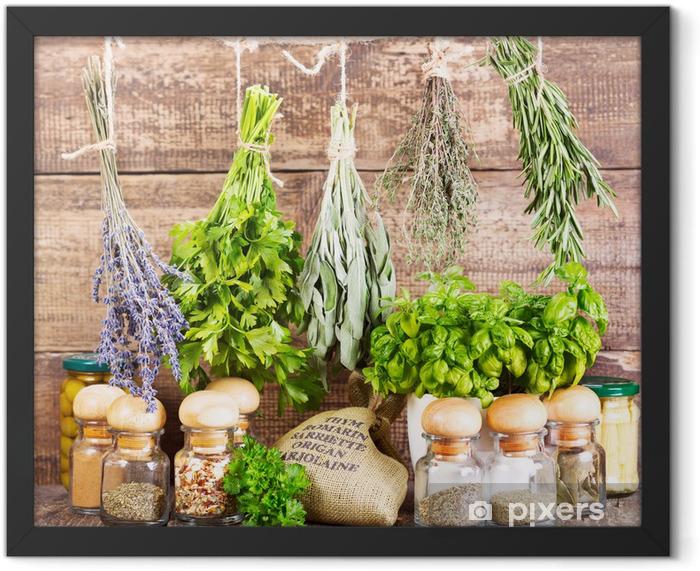 Plakat w ramie Różne świeże i suszone zioła - Zioła