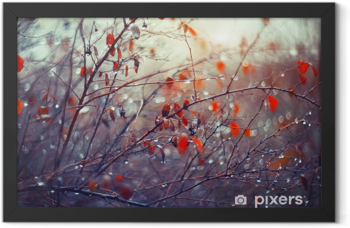background with branches and raindrops Framed Poster - Flowers and plants