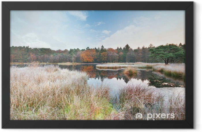 frosty morning on lake in autumn Framed Poster - Landscapes