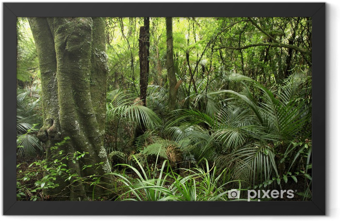 Tropical forest Framed Poster - Themes