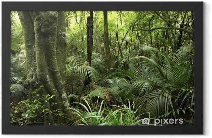 Plakat w ramie Las tropikalny - Tematy