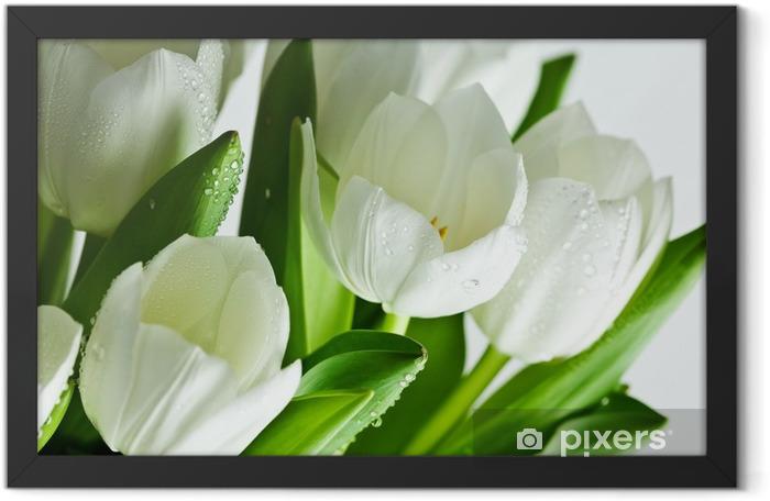 White Tulips Framed Poster - Themes