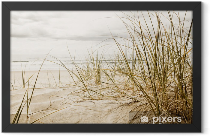 Close up of a tall grass on a beach Framed Poster - Destinations