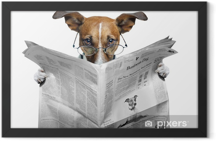 Plakat w ramie Pies czyta gazetę - Tematy