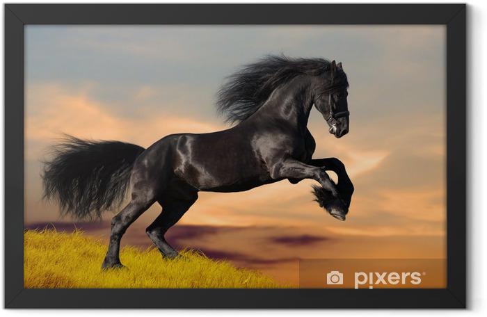 Plakat w ramie Czarny koń galopujący w zachodzie słońca - Tematy