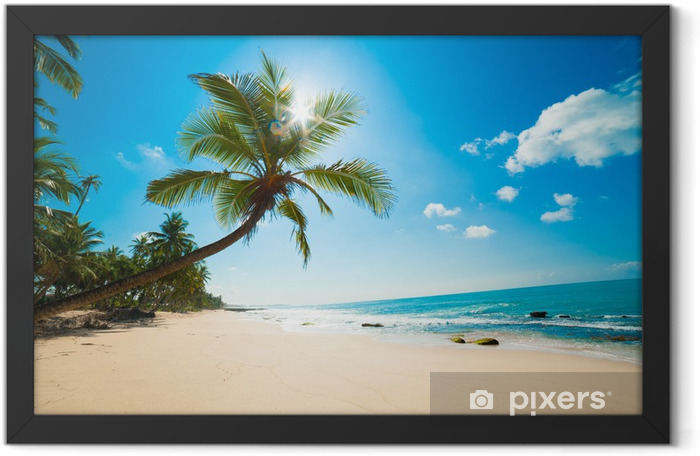 Tropical beach in the sun Framed Poster - Maldives