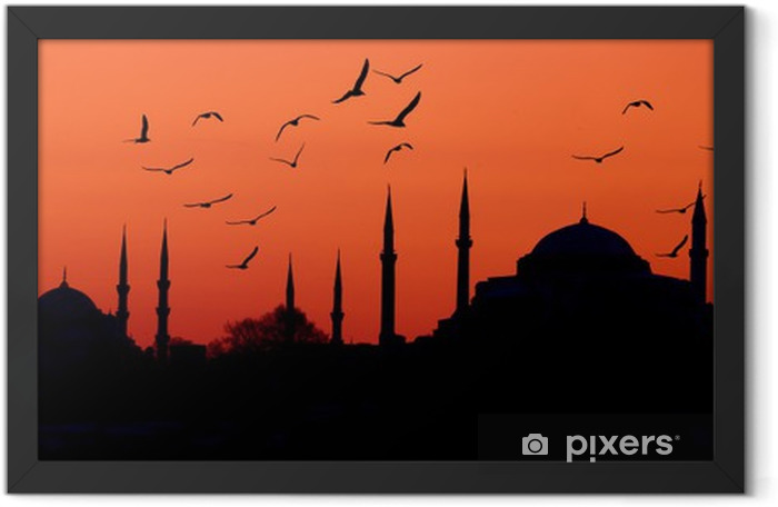 Estambul skyline Framed Poster - Styles