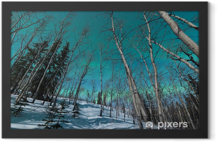 Green bands of Northern Lights over winter taiga Framed Poster - iStaging