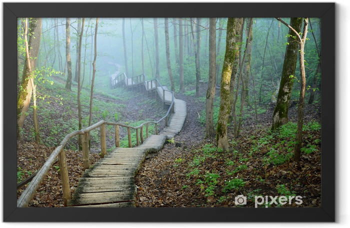 staiway in forest disappearing in strong fog Framed Poster - Themes