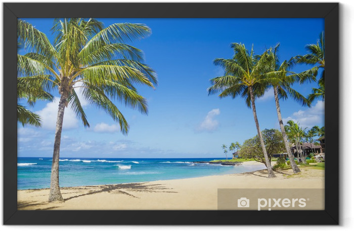 Palm trees on the sandy beach in Hawaii Framed Poster - Palm trees