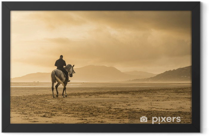 Horse riding on beach Framed Poster - Animals