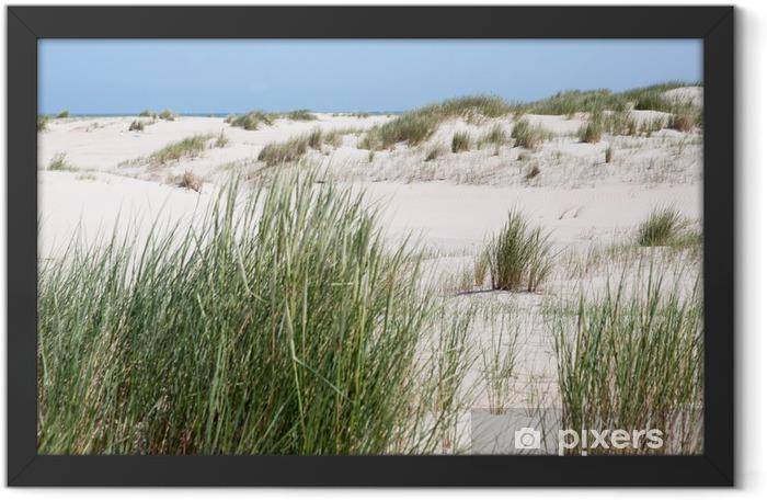 Dünengrass vor den Dünen der Insel Norderney Framed Poster - Europe