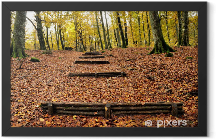 autumn forest with wooden stairs Framed Poster - Themes