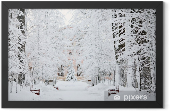 cold winter forest landscape snow Framed Poster - iStaging
