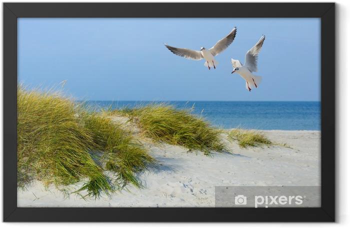 Plakat w ramie Mewy na piaszczystej plaży - Morze i ocean