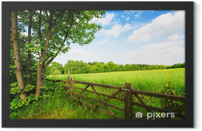 Plakat w ramie Płot w zielonym polu pod błękitne niebo - Tematy