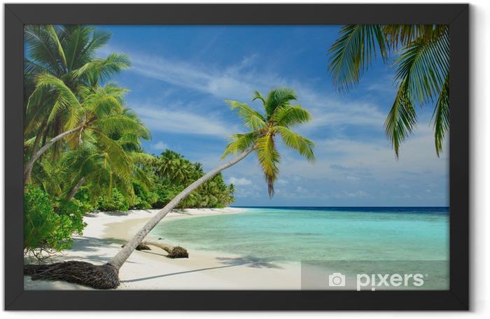 Poster en cadre Plage déserte avec des palmiers - Mer et océan