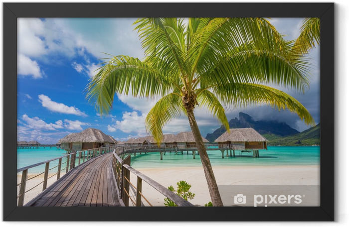 Road to paradise Framed Poster - Beach and tropics