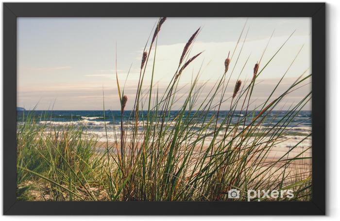 Poster en cadre Dune herbe dans la lumière du matin :) - Thèmes