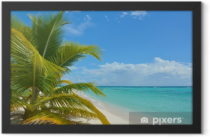 Tropical background Framed Poster - Themes