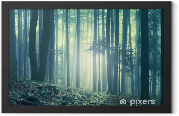 Magical blue green saturated foggy forest trees landscape. Color filter effect used. Picture was taken in south east Slovenia, Europe. Framed Poster - Autumn