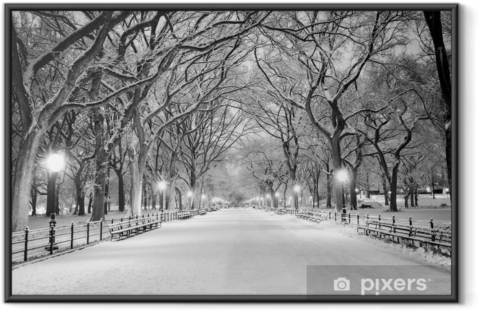 Central Park, NY covered in snow at dawn Framed Poster - American Cities