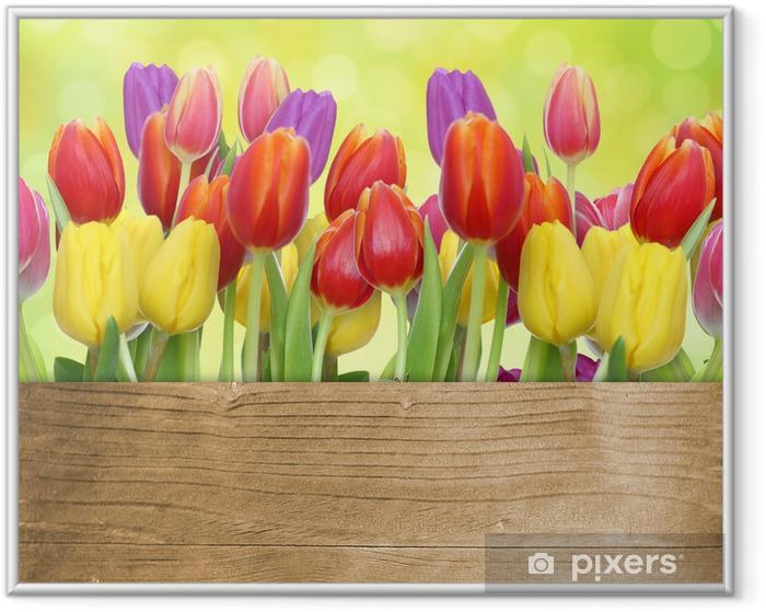 Tulpen mit Holztafel Framed Poster - Themes