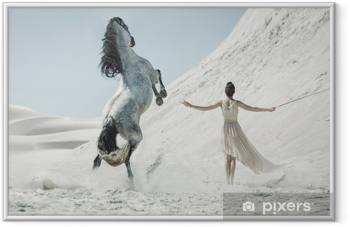 Pretty lady with huge horse on the desert Framed Picture - People