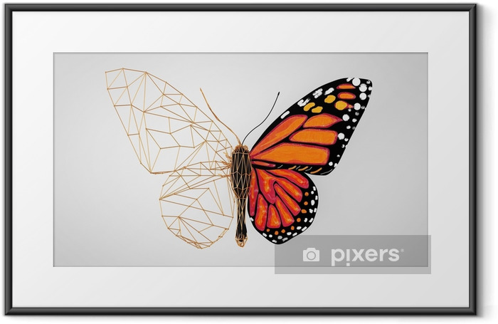 Abstract Wired Low Poly Butterfly. 3d Rendering Framed Poster - Animals