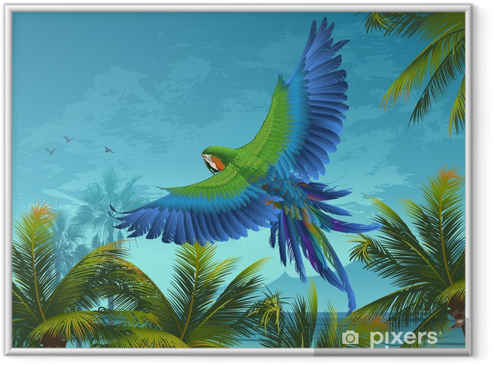 Amazon. Tropical background with parrots and palm trees. Framed Picture - Themes
