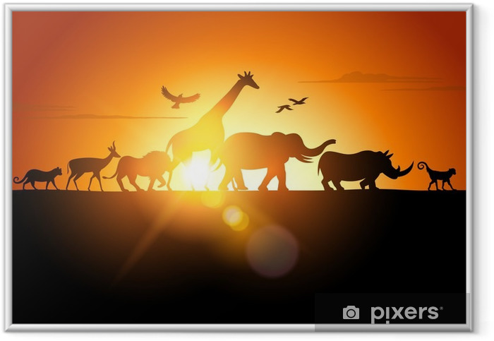 Auringonlaskun safari Kehystetty juliste -