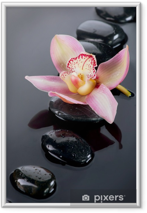 Póster com Moldura Spa Stones and Orchid Flower over Dark Background - Temas