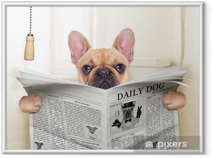 Plakat w ramie Pies WC - Mopsy
