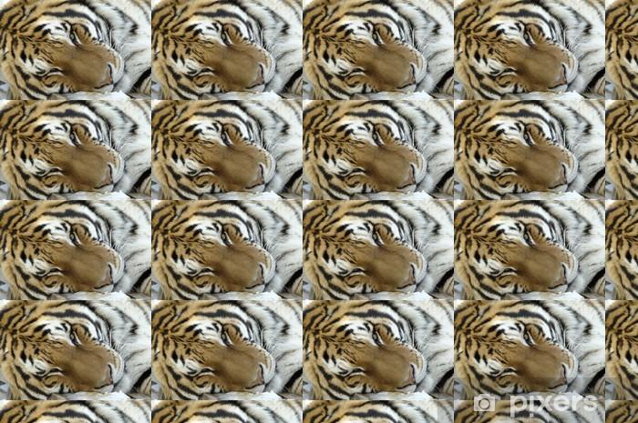Tapeta na wymiar winylowa Tygrys syberyjski - Ssaki