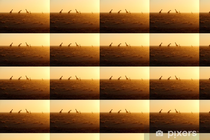 Tapeta na wymiar winylowa Herd of giraffes at sunrise - Criteo