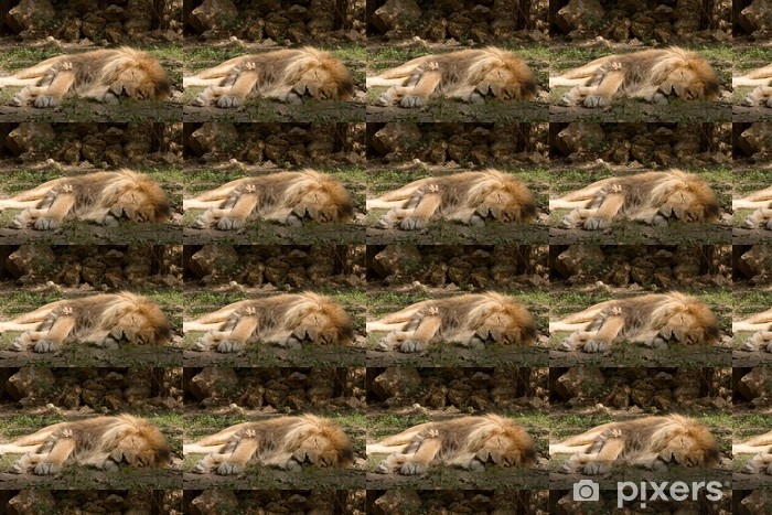 Lion Vinyl Custom-made Wallpaper - Mammals