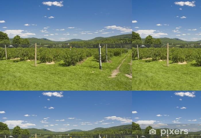 Tapeta winylowa Plantacja borówki z górami w tle - Krajobraz wiejski
