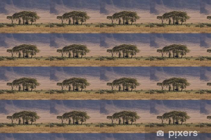 Papier peint vinyle sur mesure Afrique du cratère du Ngorongoro - Afrique