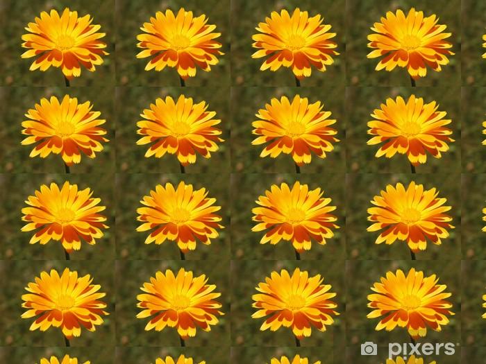 Papier peint vinyle sur mesure Here Comes The Sun 5 - Fleurs