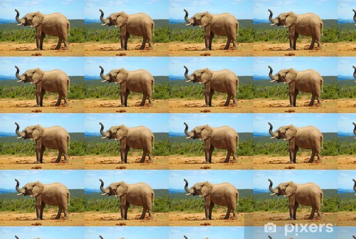 Vinylová tapeta na míru Slon africký - Témata