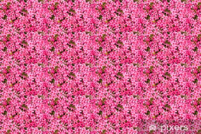 Tapeta na wymiar winylowa Różowy - Dom i ogród