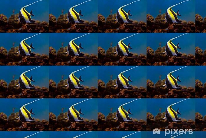 Vinyltapete nach Maß Halfterfisch - Unterwasserwelt