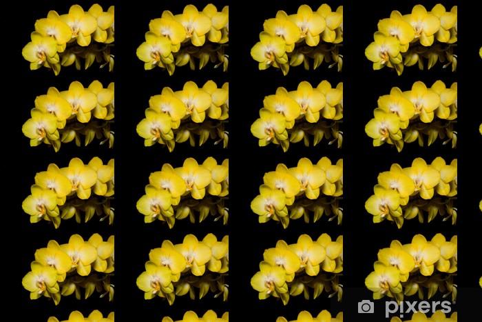 Tapeta na wymiar winylowa Orchid kwiaty na czarnym - Tematy