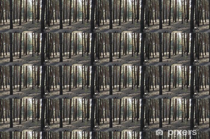 Papier peint vinyle sur mesure Woodland - Forêt