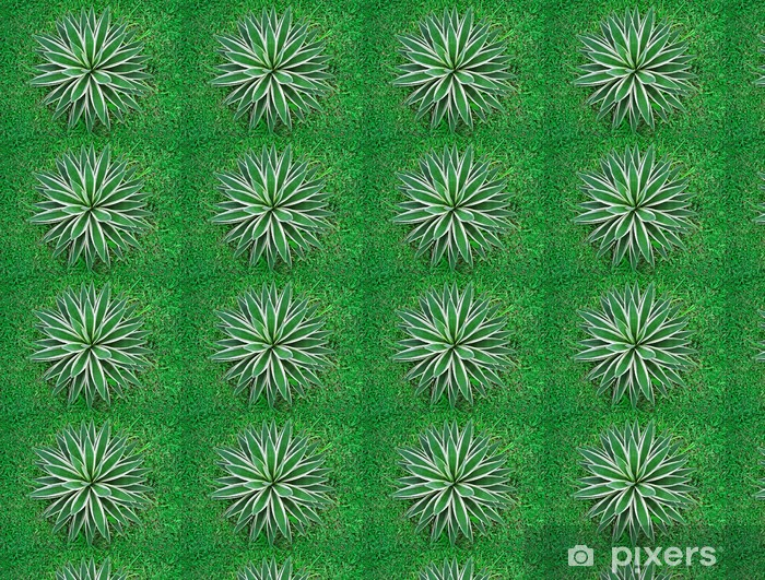 Tapeta na wymiar winylowa Tropikalnych roślin, widok z góry - Rolnictwo