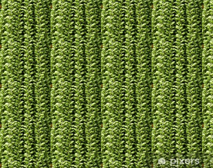 Tapeta na wymiar winylowa Królowa owoców tropikalnych palm bliska - Rolnictwo