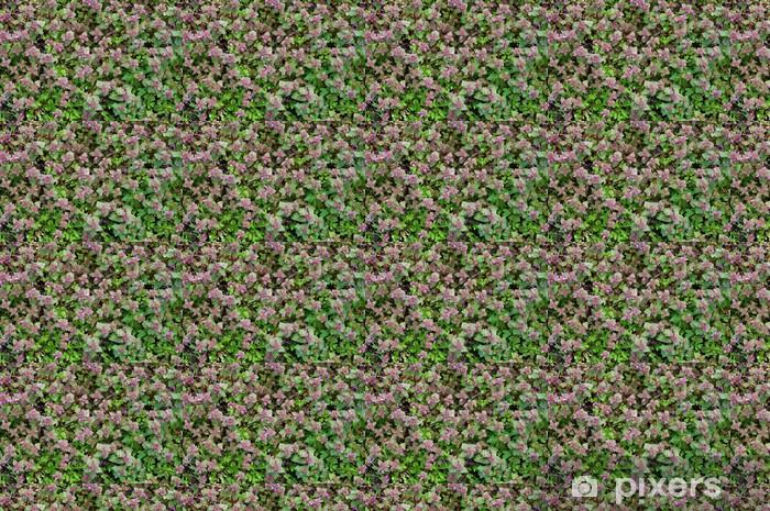 Tapeta na wymiar winylowa Dywan zielony wiosna - Rośliny