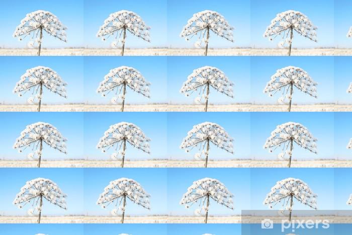 Papier peint vinyle sur mesure Plante sèche enneigée en hiver. - Saisons